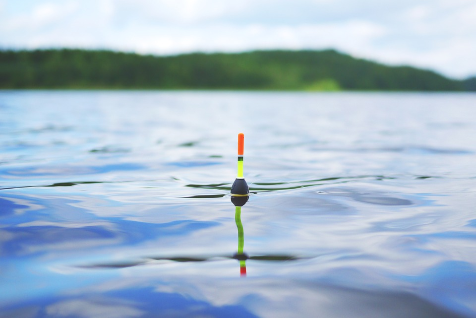 Novice Anglers Need These Discount Fishing Tackle