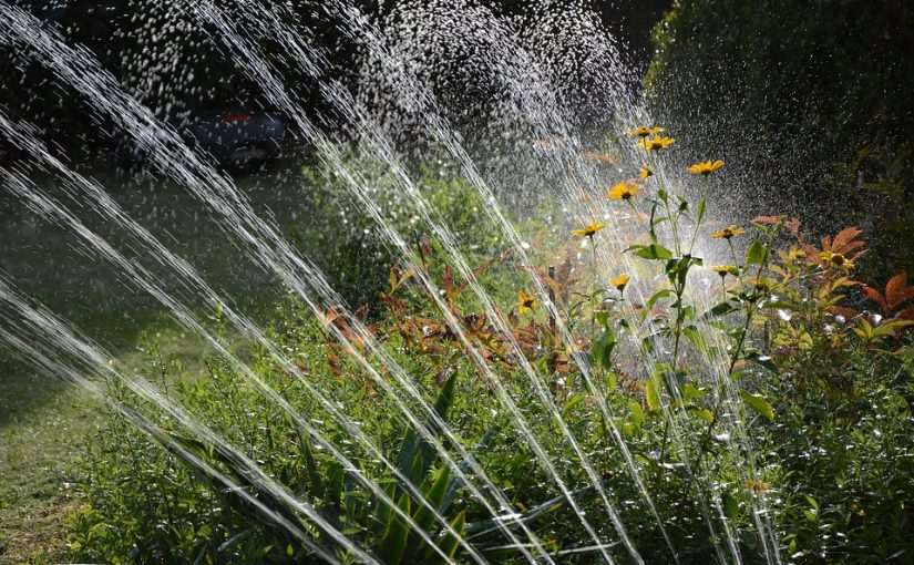 7 Low-cost Techniques For Your Garden Irrigation Projects