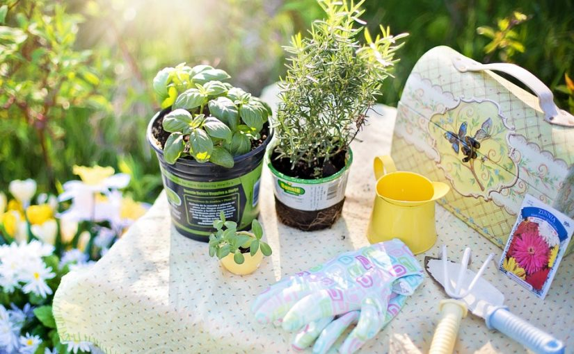 Gardening Is A Perfect Hobby For Children
