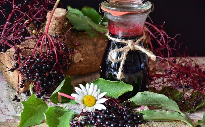The Benefits Of Elderberries