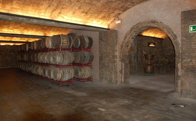 Wine Cellar Design Columbia