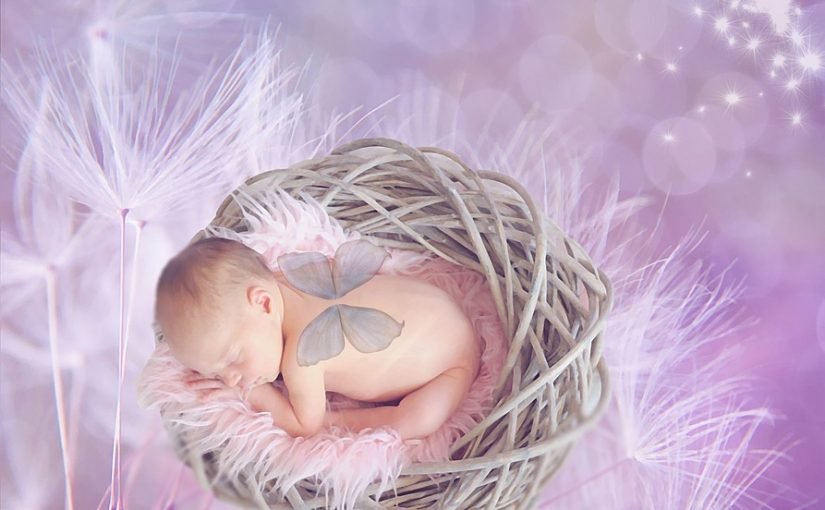 What To Look For In A Baby Girl Nest