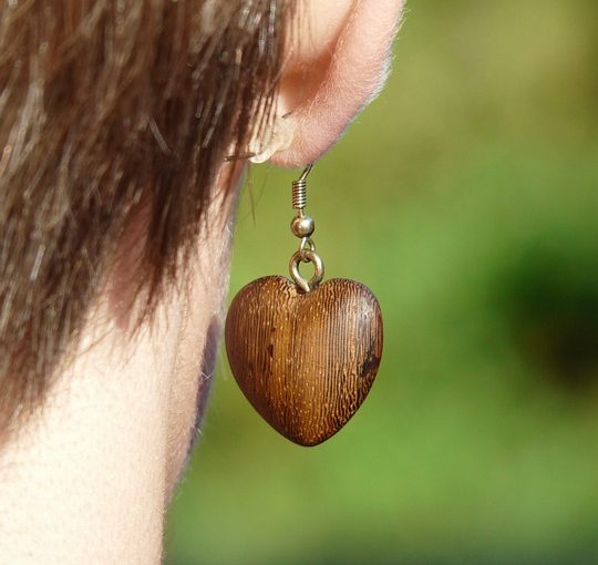 Wooden Stud Earrings Is Great For Anyone