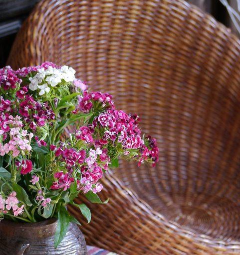 Factors To Consider When Buying Garden Furniture