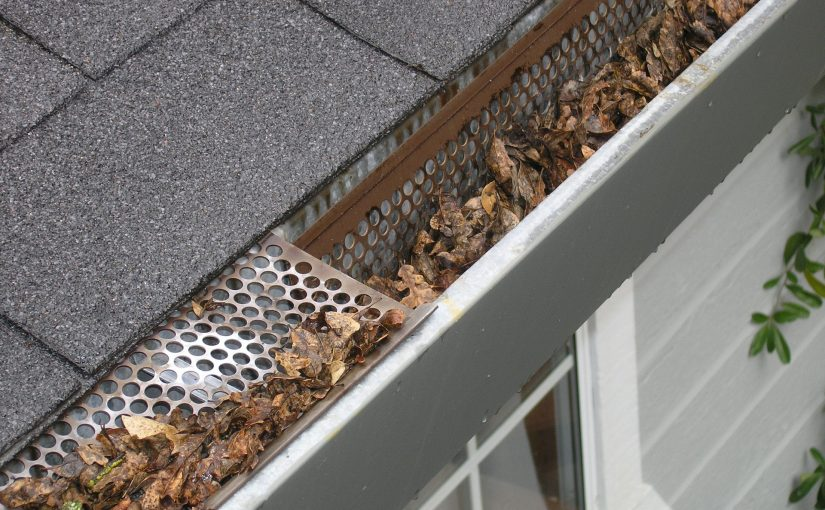 How To Find The Best Gutter Cleaning Services