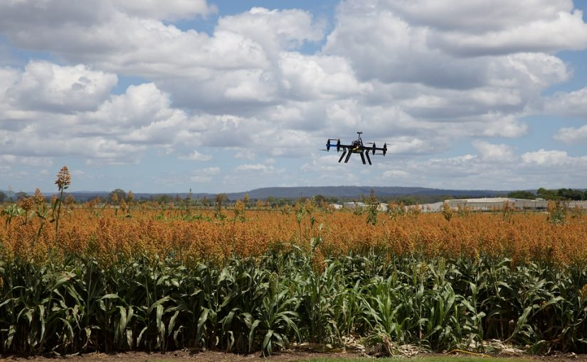 AI Used In Agriculture – How Does AI Helps?