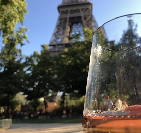 Burgundy Tour From Paris For Wine Enthusiasts
